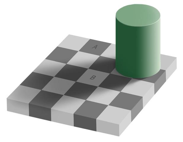 Beau Lotto Optical Illusion
